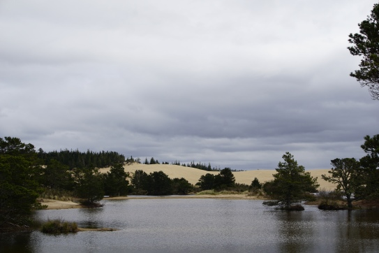 Oregon Dunes State Park