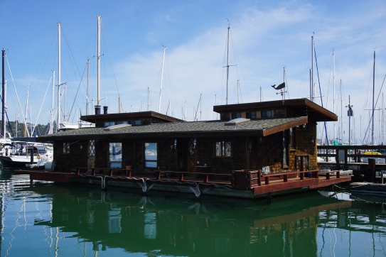 I love this house boat.